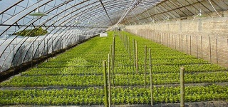 2015年武冈市职业中专新型职业农民培育工程项目