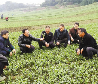 新型职业农民培训