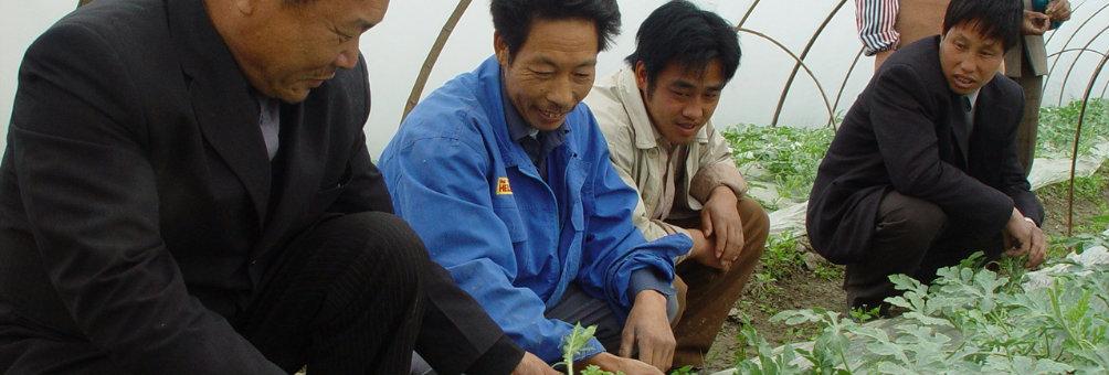 农科教结合项目