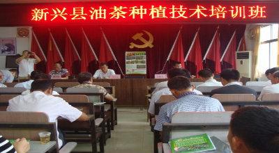 新兴县林业局举办油茶种植技术培训班