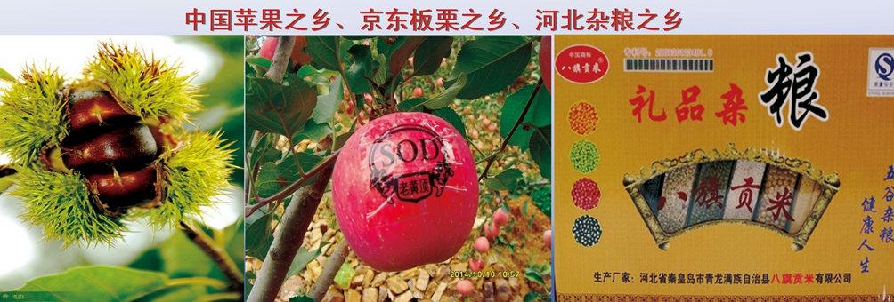 青龙满族自治县特色产业