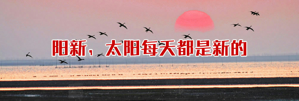 阳新网湖湿地保护区