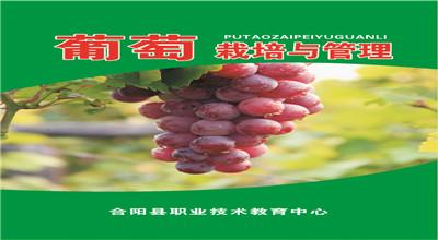 葡萄栽培与管理——校本培训教材