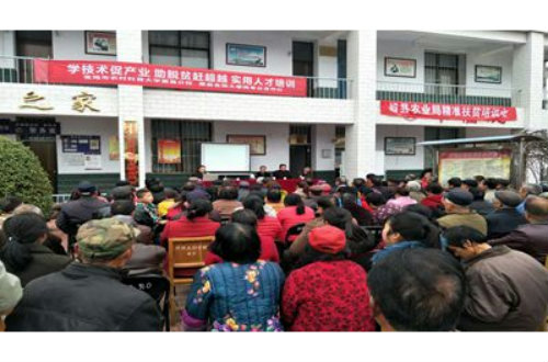 齐镇斜谷村举办大樱桃生产技术培训