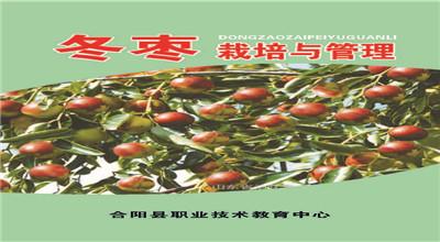冬枣栽培与管理——校本培训教材