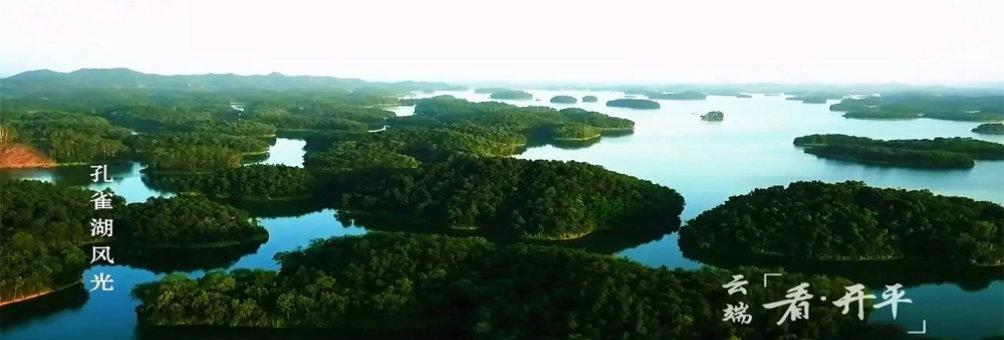 云端孔雀湖