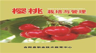 樱桃栽培与管理——校本培训教材