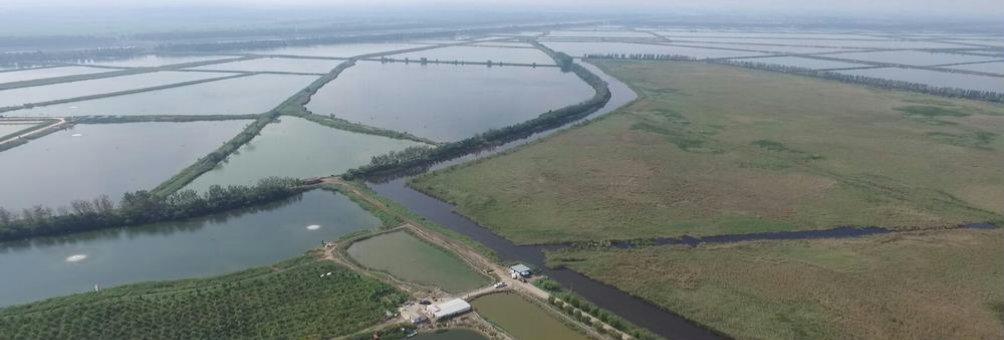 和谐共享      生态之城            大黄堡国家级湿地保护区