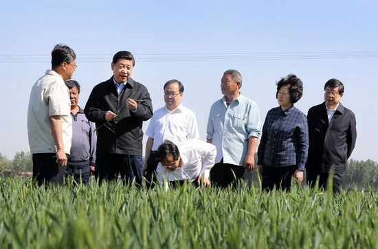 积极开展成人职业技能培训 加大农村劳动力转移培训力度