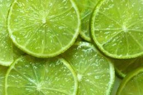 柠檬高产栽培技术项目