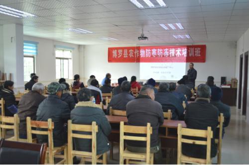 博罗县举办农作物冻害复产技术培训班