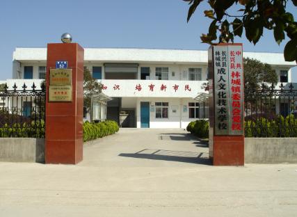 林城镇成人文化技术学校