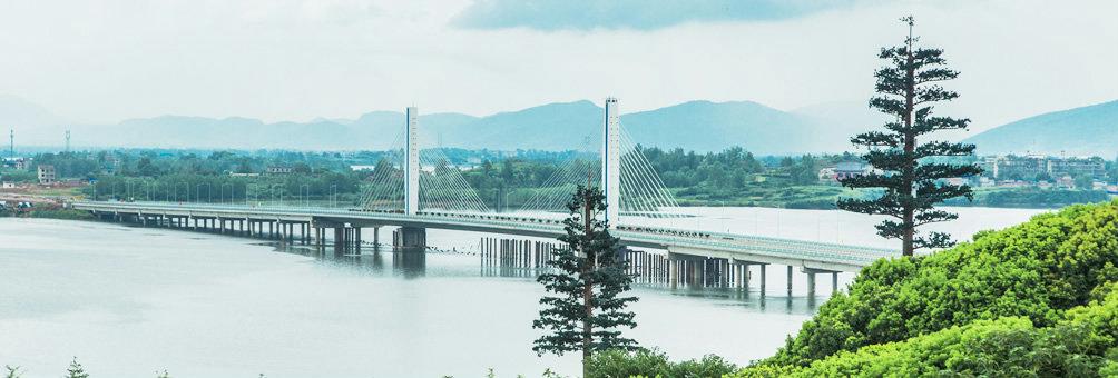 阳新莲花湖大桥