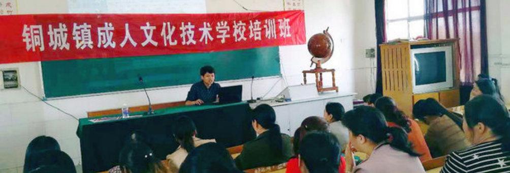铜城镇成人文化技术学校组织家电使用与维修培训活动