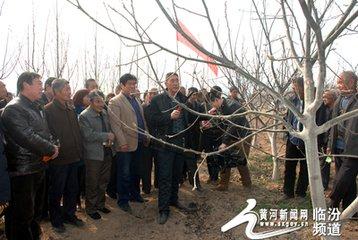 """襄汾""""培训+"""" 促农村集体经济发展"""