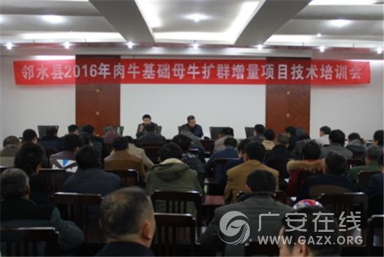 邻水县召开2016年肉牛基础母牛扩群增量项目技术培训会