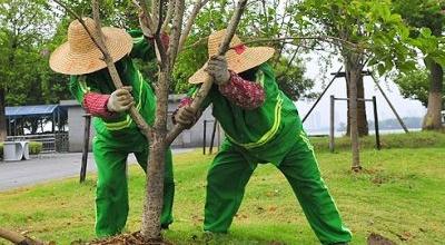 绿化工培训项目
