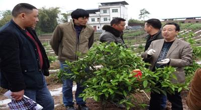 复盛乡农业科学技术进村入户培训