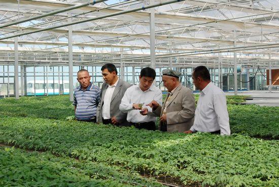 农业综合开发现代化示范区