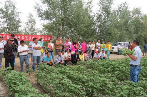新湖农广校把课堂办在田间地头助学员增收
