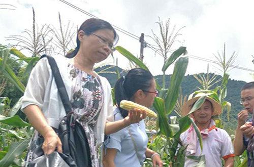 两江镇举行电商扶贫,为特色农产品谋出路