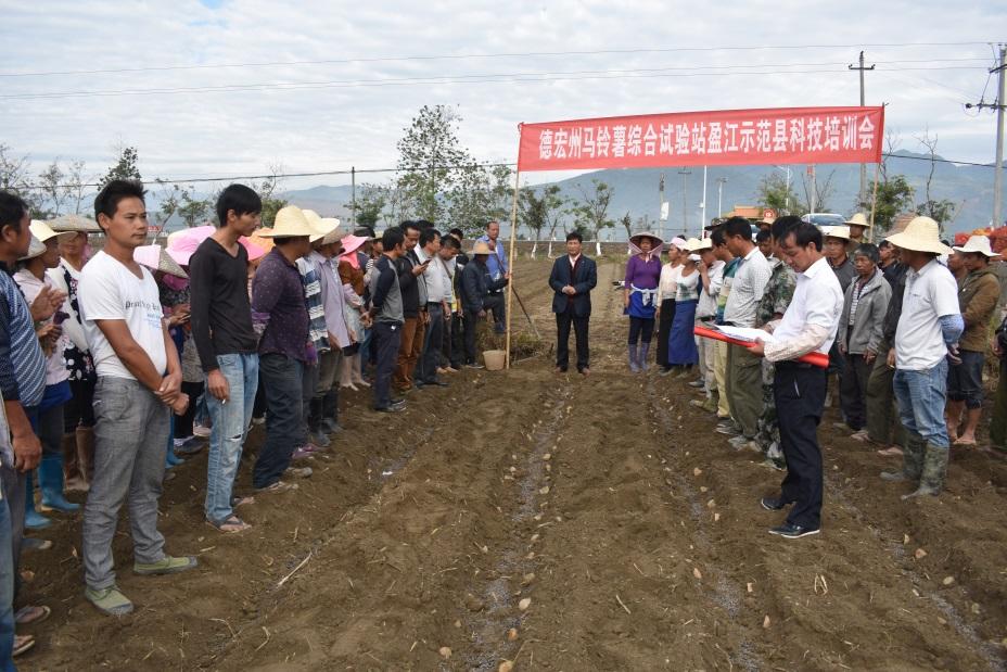 旧城镇喊撒村举办马铃薯秋播品种比较试验培训会