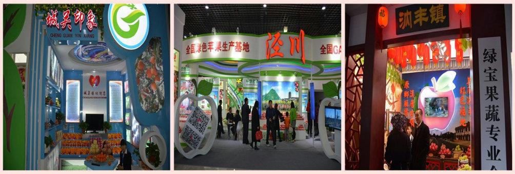 泾川县组团参加第三届平凉金果节博览会