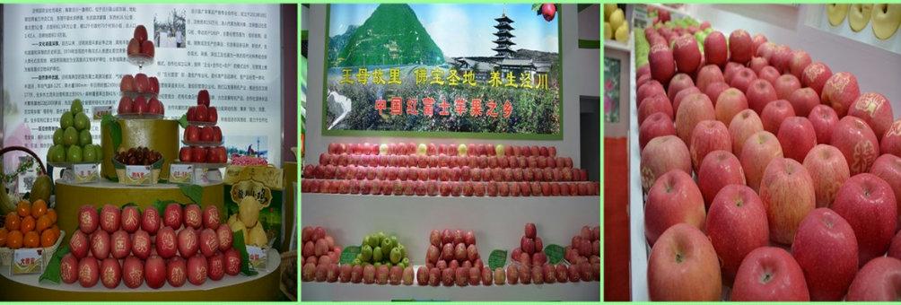 王母故里 佛宝圣地 养生泾川—中国红富士苹果之乡
