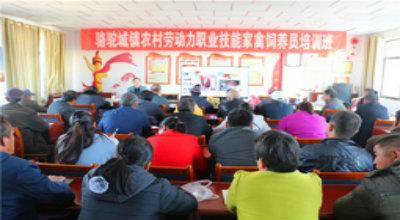 骆驼城镇举办农村劳动力职业技能培训班