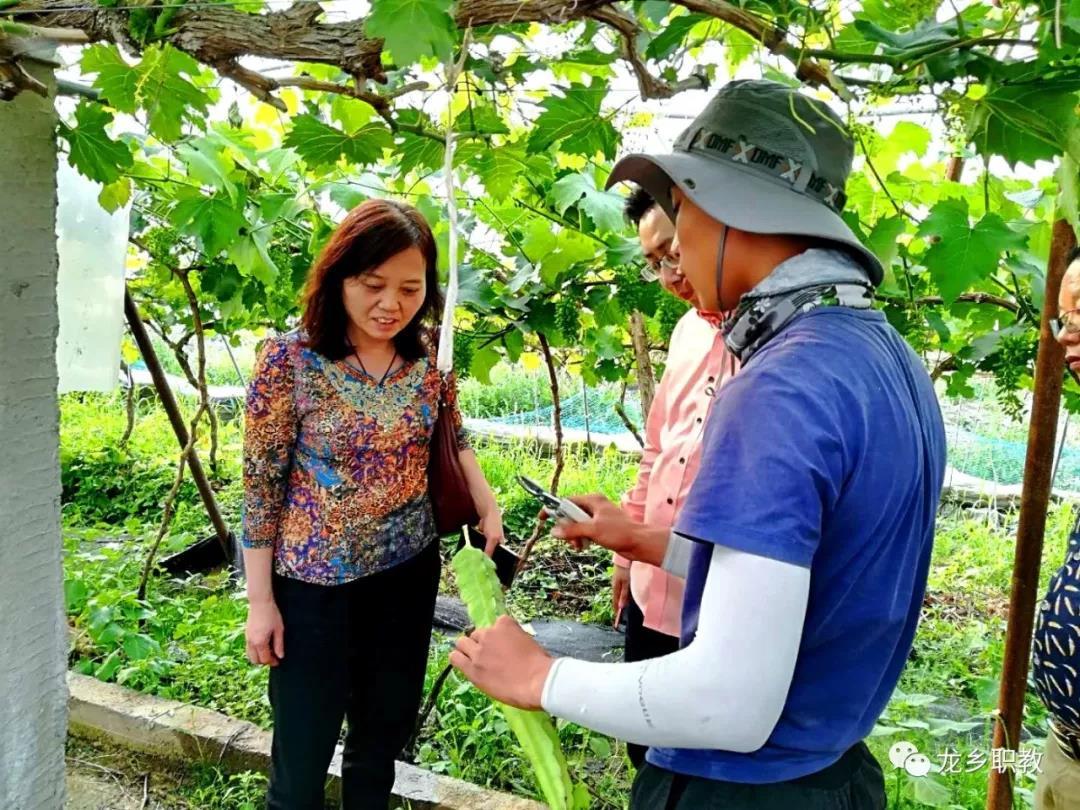 省新型职业农民培养工作调研组莅临濮阳县职业技术学校调研