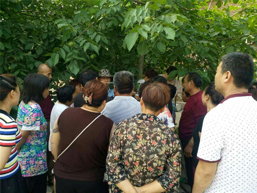 新密市总工会在牛店镇李湾村举办果树种植技能培训班