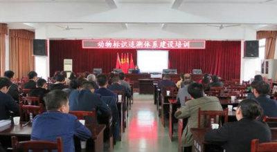 合江县开展动物标识追溯体系建设培训