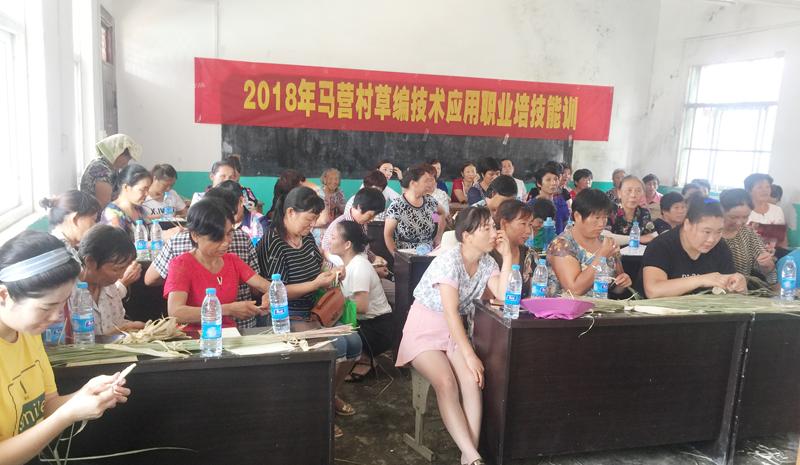 平桥区职教局举办草编培训班帮助村民学门手艺