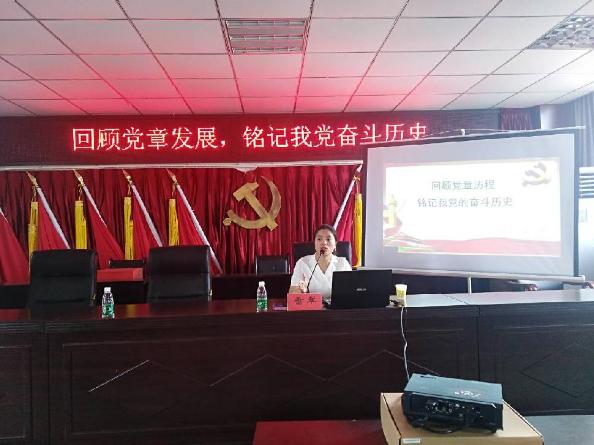 大坪乡召开2018年发展对象、入党积极分子培训会