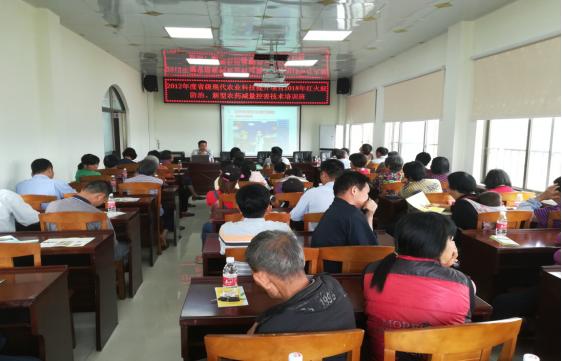 开平市农业综合服务中心举办现代农业科技提升项目2018年红火蚁防治暨农药减量控害技术培训班