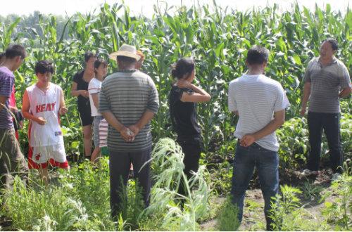 统筹整合培训资源  助力现代化大农业