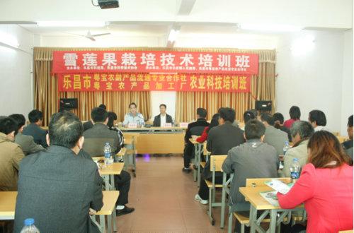 云岩镇成人文化技术学校简介
