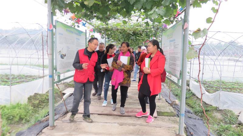 蒲江县职业中专学校农村电子商务培训班圆满结业