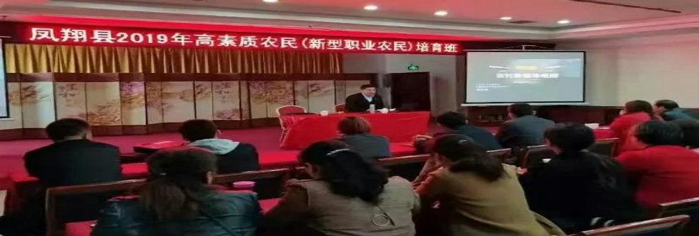 凤翔举办职业农民电子商务培训班!