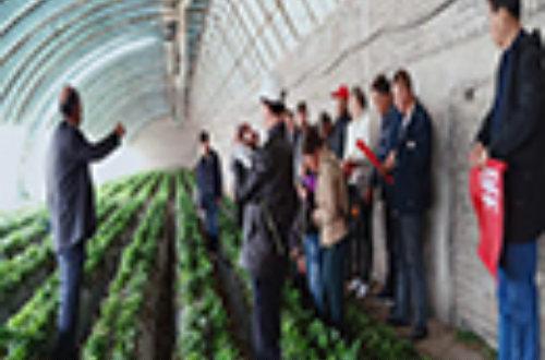玉门市恒旺农业示范园区农民田间学校被评为全国示范农民田间学校