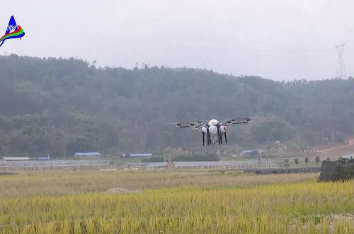 植保无人机新技术应用培训