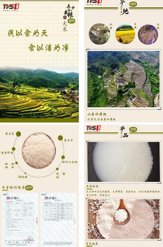 一镇一品——五山梯田生态米