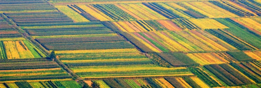 全国绿色生态农业示范区