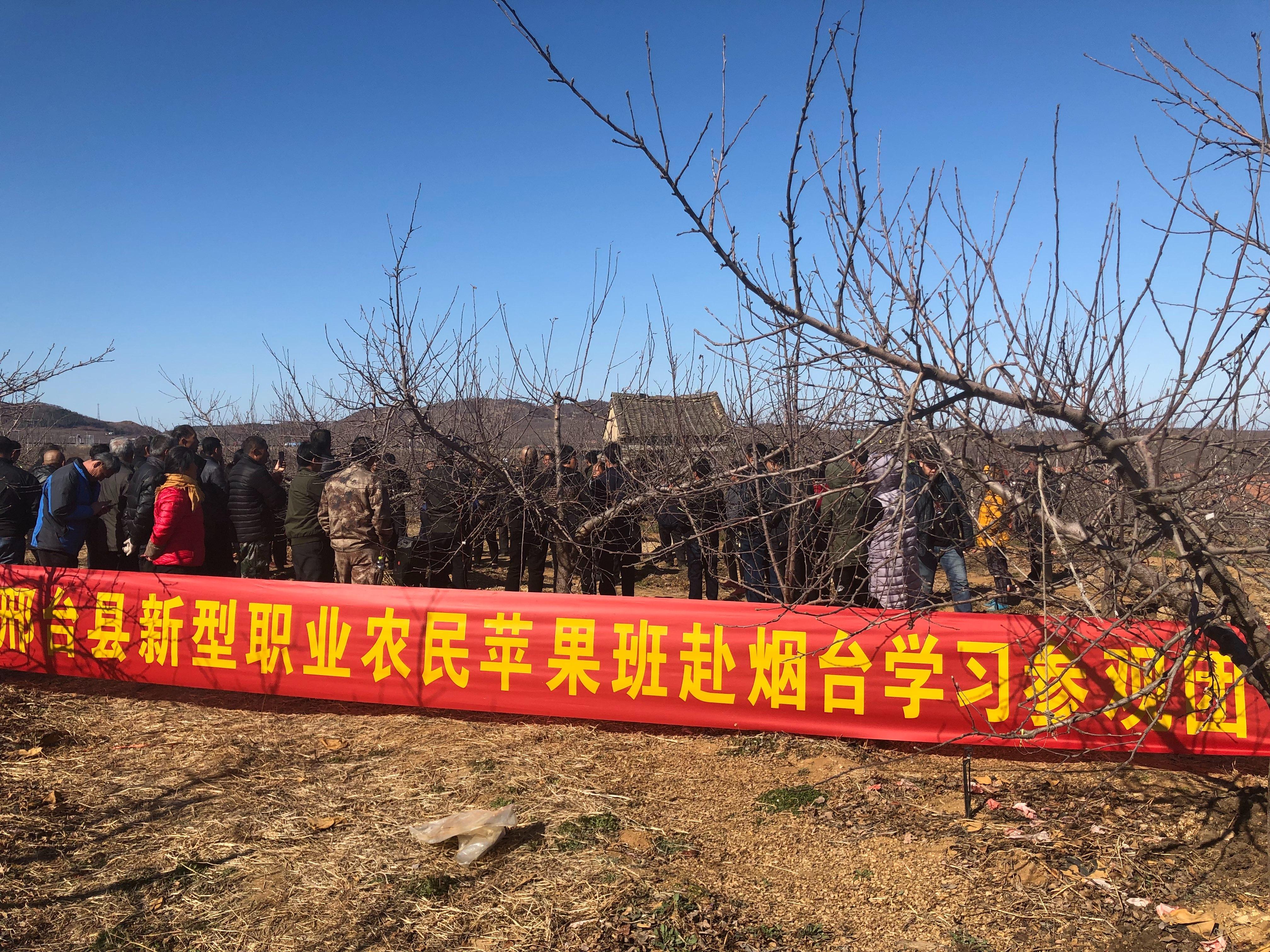 邢台县新型职业农民培育工程烟台学习