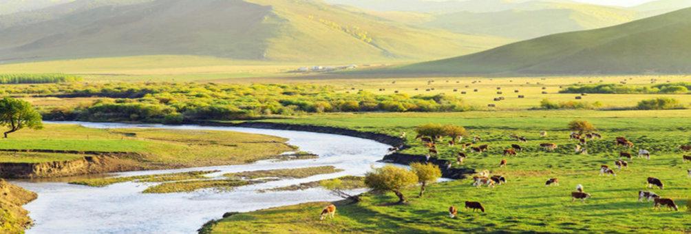 自然保护区