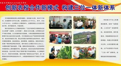石沟镇成人文化技术学校