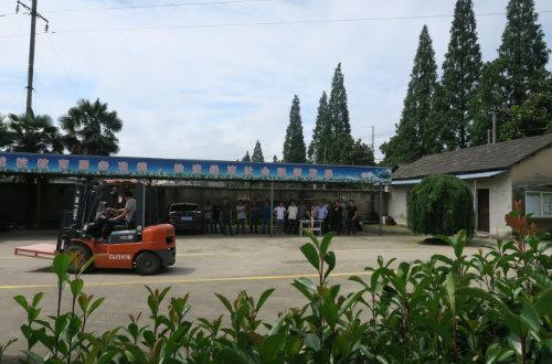 安吉县特种设备叉车考证如期进行