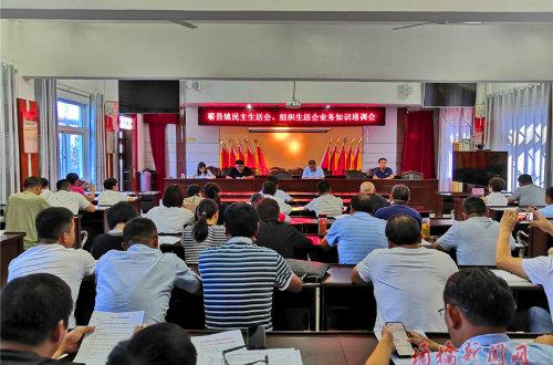 蕲县镇召开民主生活会、组织生活会业务知识培训会