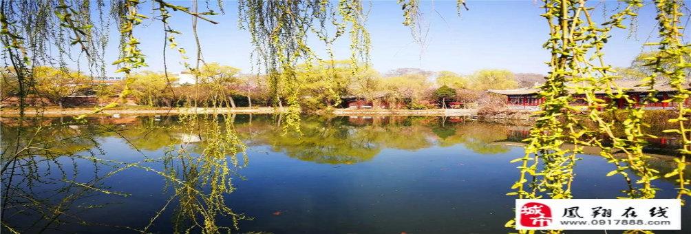 3月23日起,凤翔东湖恢复开放!千年垂柳、美出天际,这个春天不见不散~