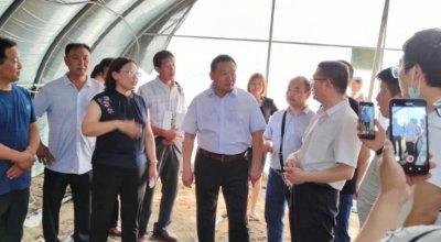 盛吉顺第五期全国羊肚菌高产栽培技术培训圆满结束